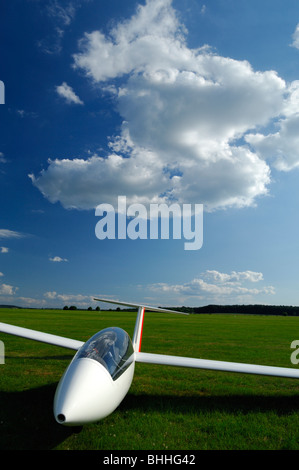 Twin seats glider Duo Discus parked on green grass of Sarreguemines airfield under big white Cumulus cloud - Stock Photo