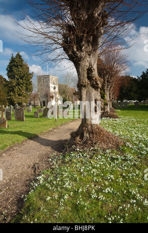 St Mary's Church and snowdrops in Kintbury, Berkshire, Uk - Stock Photo