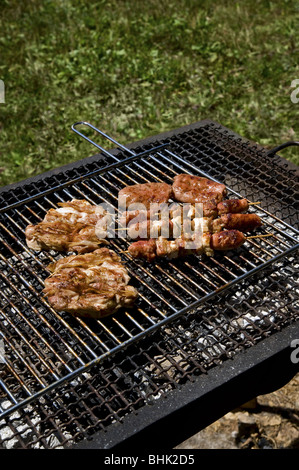 Grilled meat and sausages on barbecue grill - Stock Photo