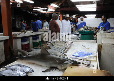 Sharks for sale at fish market in Sharjah, United Arab Emirates - Stock Photo
