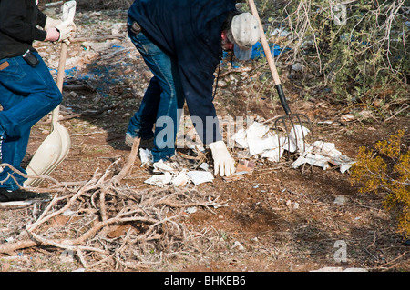 volunteers clean up trash in a park and on trails - Stock Photo