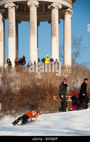 Sledging in English garden, Munich, Germany - Stock Photo