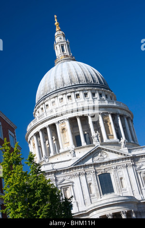 London, Greater London, England. The dome of St Paul's Cathedral, designed by Sir Christopher Wren, tilted view. - Stock Photo