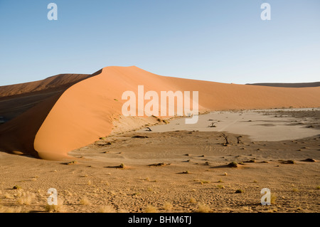 Red 'star dune' in Namib desert, Namibia, Africa. S-shaped shadow. Dry trees. Hidden Vlei, Sesriem - Stock Photo