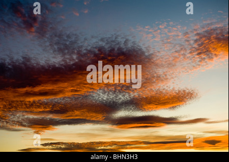 image of altocumulus clouds at sunset - Stock Photo