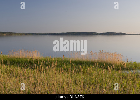geography / travel, Germany, Mecklenburg-West Pomerania, Ruegen, Nationalpark Jasmund, , Additional-Rights-Clearance - Stock Photo