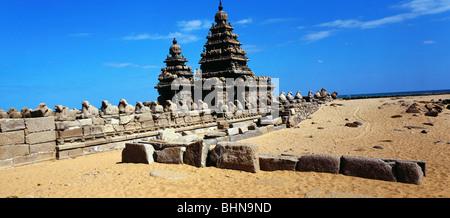 geography / travel, India, Tamil Nadu, Mahabalipuram, temple, Nandi sculptures, Pallava dynasty, 7th century, Asia, - Stock Photo