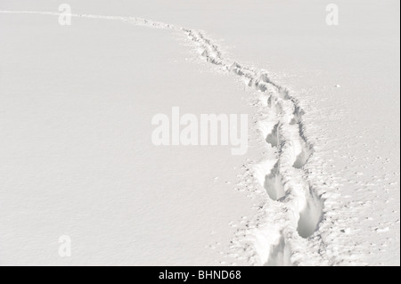 Foot path through deep snow. - Stock Photo