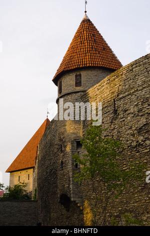 Section of the city walls around the Old Town (Vanalinn), Tallinn, Estonia - Stock Photo