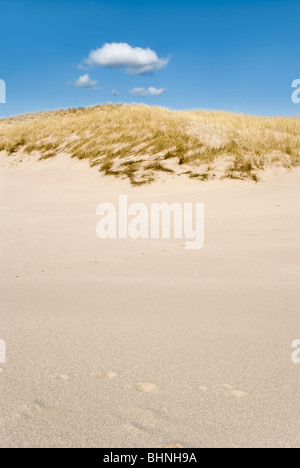 Sand dunes of Sandwood Bay Scotland taken on sunny day with blue sky - Stock Photo