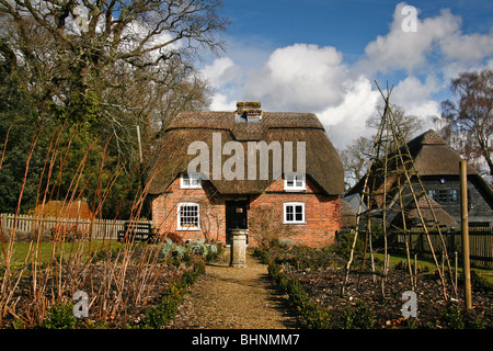 A beautiful thatched cottage in The New Forest - Stock Photo