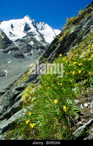 The Grossglockner glacier in Alps, Austria - Stock Photo