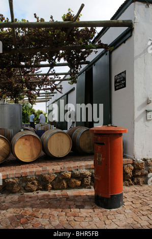 Post House cellar and winery Stellenbosch cape province South Africa at harvestime - Stock Photo