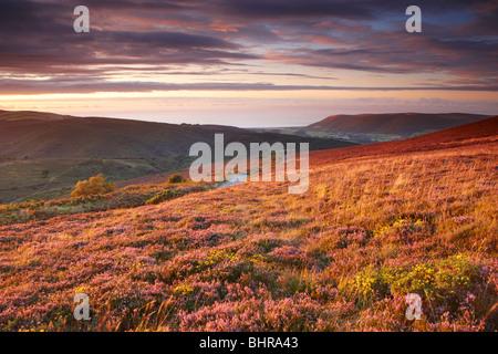 View from Dunkery Hill toward Bossington Hill and Porlock - Stock Photo