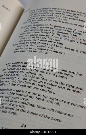 book of psalms how to say chapter