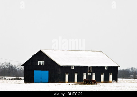 Horse Barn with Blue Door in Snow Covered Field in Fayette County, Kentucky - Stock Photo