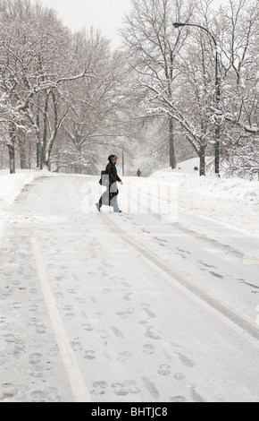 Woman walking in Central Park during a snowstorm - Stock Photo