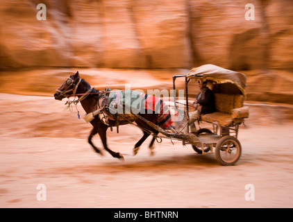 Horse and carriage riding through the Al-Siq Canyon to the Treasury building at the ancient city of Petra in Wadi - Stock Photo