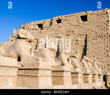 Ram statues at the temple of Karnak in Luxor, Egypt. - Stock Photo