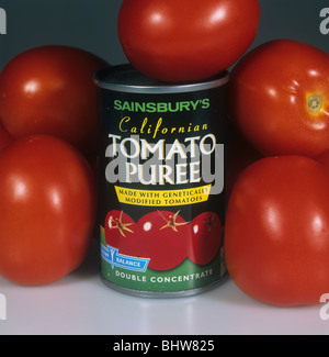 Tin of genetically modified tomato puree with ripe tomato fruit - Stock Photo