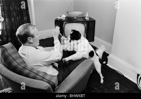1966 World Cup Tournament in England. Pickles the hero dog who found the Jules Rimet trophy after it had been stolen - Stock Photo