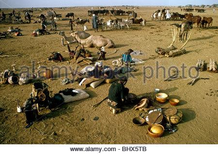 Nomad camp Sahara - Stock Photo