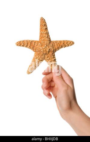 hand holding starfish - Stock Photo