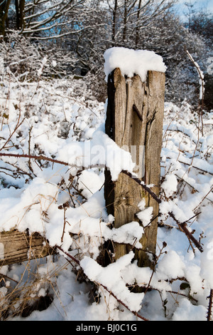 Wooden Fence Post in the Snow with branches - Stock Photo
