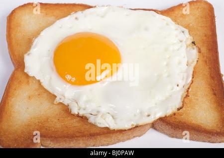 Free range fried egg - Stock Photo