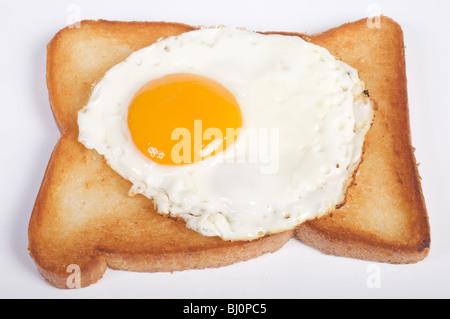 Free range egg on fried bread - Stock Photo