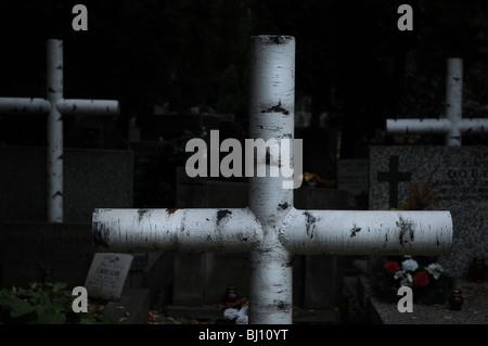 Metal crosses imitated birch tree, Powazki Military Cemetery in Warsaw, Poland - Stock Photo