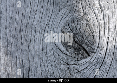 Close-up of weathered wooden boards on an old barn - Stock Photo