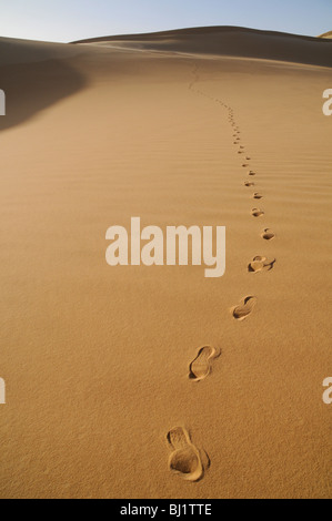 Footprints on a sand dune in the remote Great Sand Sea region of the Sahara desert, in the Western (Libyan) Desert - Stock Photo