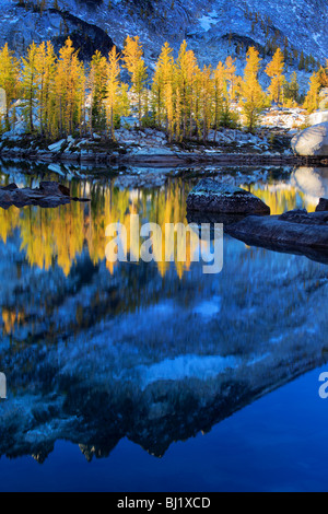 Larch trees at Leprechaun Lake in the Enchantment Lakes wilderness in Washington state, USA - Stock Photo