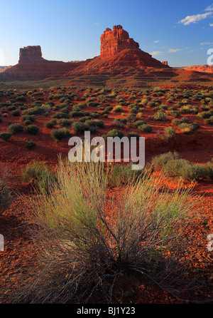 Cracked earth and bushes in Valley of the Gods, Utah - Stock Photo