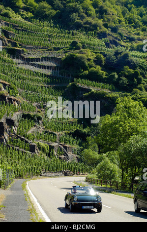 Eifel, Ahrtal bei Bonn Altenahr, Straße durch das Ahrtal, steile Weinberge, - Stock Photo