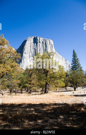 Southwest face of El Capitan, Yosemite National Park in California, USA - Stock Photo