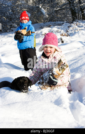 Children and dog collecting wood in snow - Stock Photo