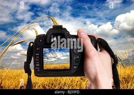 Man taking a landscape photography with a digital photo camera - Stock Photo