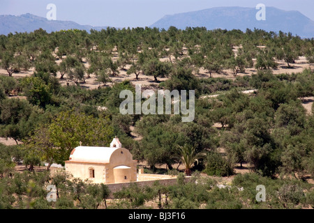 Chapel in the olive grove at Kournas, Crete, Greece, Europe - Stock Photo