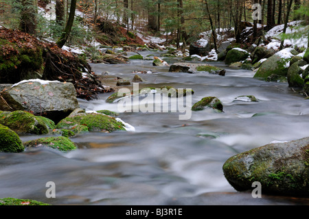 Flowing movement, snow, ice, Kleine Ohe mountain stream, Nationalpark Bayrischer Wald Bavarian Forest National Park, - Stock Photo