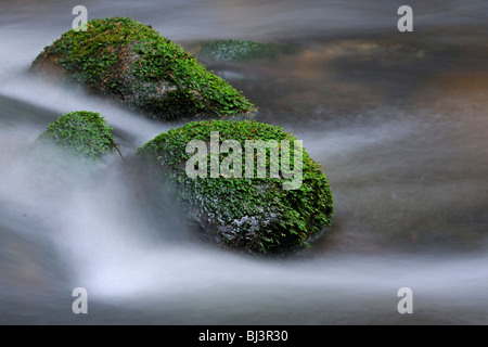 Flowing movement, close-up with snow, ice, Kleine Ohe mountain stream, Nationalpark Bayrischer Wald Bavarian Forest - Stock Photo