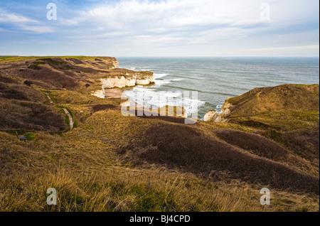 Holderness coast at Flamborough Head, Yorkshire, UK - Stock Photo