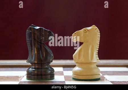 Chess Knights - Stock Photo