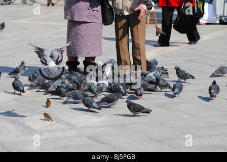 Tourists and Pigeons in St Mark's Square, Venice Italy - Stock Photo