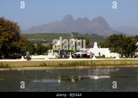 Vergenoegd Wine Estate at Faure close to Stellenbosch in the western Cape South Africa The Helderberg mountain and - Stock Photo