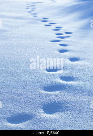 Old human footprints on deep snow at Winter - Stock Photo