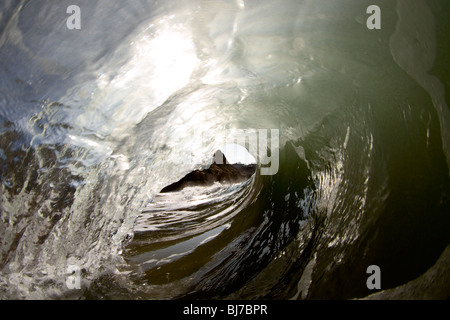 The surfer's perspective looking out from inside the barrel of a wave. - Stock Photo