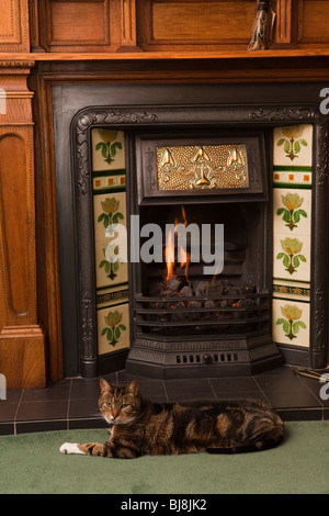 Domestic Interior, contented pet cat stretched out in front of fire in Arts and Crafts oak fireplace - Stock Photo