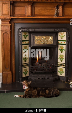 Domestic Interior, contented pet cat yawning in front of fire in Arts and Crafts oak fireplace - Stock Photo